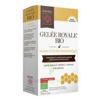 Dayang Gelée Royale Bio 15 Gélules à Vélines