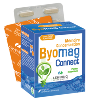 Lehning Byomag Connect Gélules B/60 à Vélines