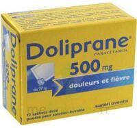 DOLIPRANE 500 mg Poudre pour solution buvable en sachet-dose B/12 à Vélines