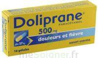 DOLIPRANE 500 mg Gélules B/16 à Vélines