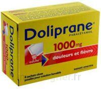 DOLIPRANE 1000 mg Poudre pour solution buvable en sachet-dose B/8 à Vélines