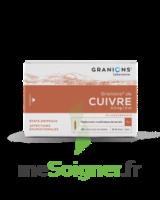 Granions De Cuivre 0,3 Mg/2 Ml S Buv 30amp/2ml à Vélines