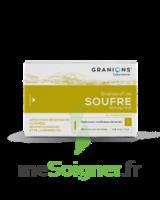 Granions De Soufre 19,5 Mg/2 Ml S Buv 30amp/2ml à Vélines