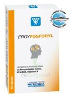 Ergyfosforyl Caps B/60 à Vélines