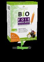 3 CHENES BIO Radis noir Solution buvable foie 30 Ampoules/10ml à Vélines