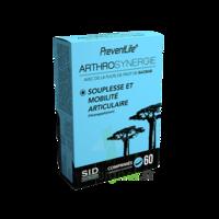 SID Nutrition Preventlife Arthrosynergie Comprimés B/60 à Vélines