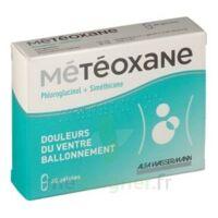 METEOXANE Gél Plq/30 à Vélines