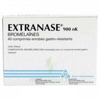 EXTRANASE 900 nK, comprimé enrobé gastro-résistant à Vélines