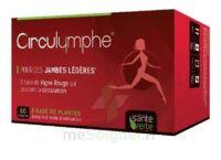 Santé Verte Circulymphe Triple Actions B/60 à Vélines