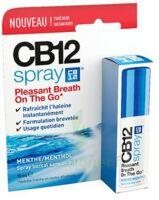 CB 12 Spray haleine fraîche 15ml à Vélines