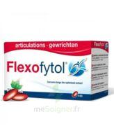 Flexofytol 60 Caps à Vélines