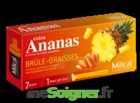 MILICAL ANANAS BRULEUR DE GRAISSE à Vélines