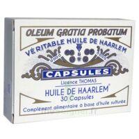 Huile de Haarlem B/30 à Vélines
