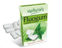 FLUOGUM Chew gum dragée menthe forte à Vélines