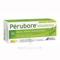 PERUBORE Caps inhalation par vapeur inhalation Plq/15 à Vélines