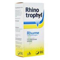 RHINOTROPHYL Solution pour pulvérisation nasale 1Fl/12ml à Vélines