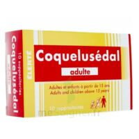 COQUELUSEDAL ADULTES, suppositoire à Vélines