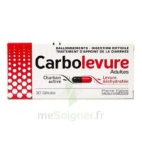 CARBOLEVURE Gélules adulte Plq/30 à Vélines