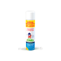 Clément Thékan Solution Insecticide Habitat Spray Fogger/300ml à Vélines