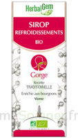 Herbalgem Sirop Bio Refroidissement 150ml à Vélines