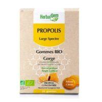Herbalgem Propolis large spectre Gomme bio B/24 à Vélines
