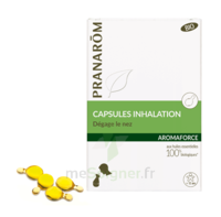 Aromaforce Caps Inhalation Bio B/15 + Inhalateur à Vélines