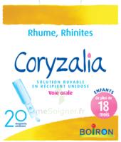 Boiron Coryzalia Solution buvable unidose B/20 à Vélines