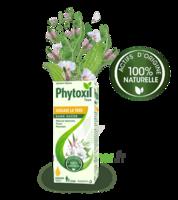 Phytoxil Toux Sans Sucre Sirop Adulte Enfant +2 Ans Fl/120ml à Vélines