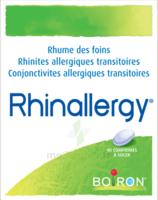 Boiron Rhinallergy Comprimés B/40 à Vélines