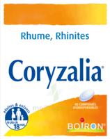 Boiron Coryzalia Comprimés Orodispersibles à Vélines