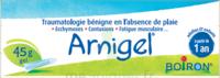 Boiron Arnigel Gel T/45g à Vélines